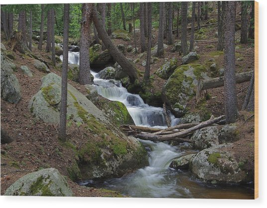 Wooded Stream Wood Print
