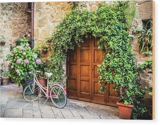 Wooden Gate With Plants In An Ancient Wood Print by Giorgiomagini