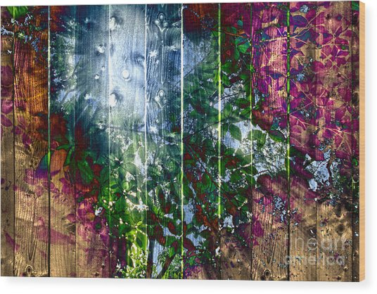 Wooden Planks And Sunlight Streaming Through Leaves I Wood Print