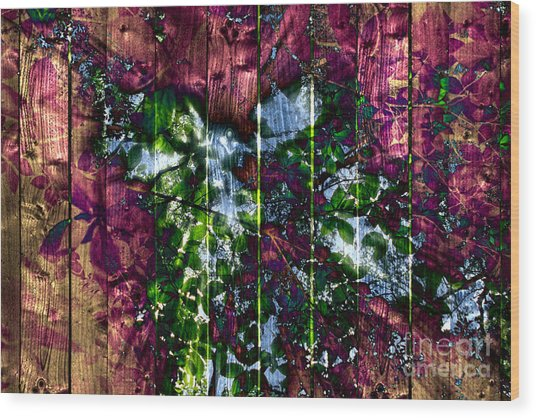 Wooden Planks And Sunlight Streaming Through Leaves II Wood Print