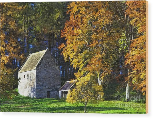 Woodhouses Bastle Northumberland - Photo Art Wood Print by Les Bell