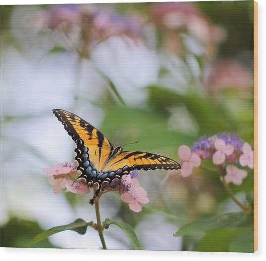 Woodland Butterfly Wood Print
