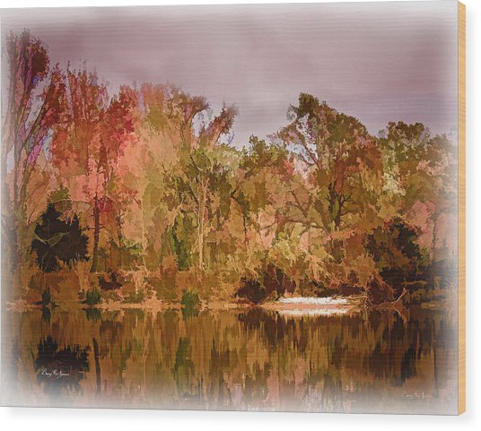 Woodland Reflections Wood Print by Barry Jones