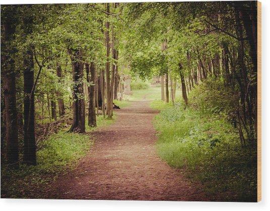 Woodland Trail Wood Print