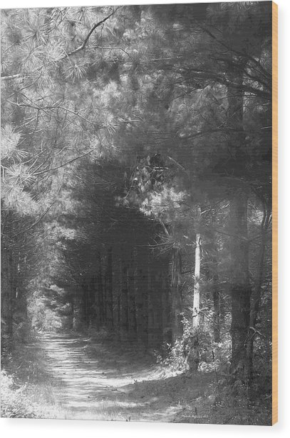 Woodland Tunnel Wood Print