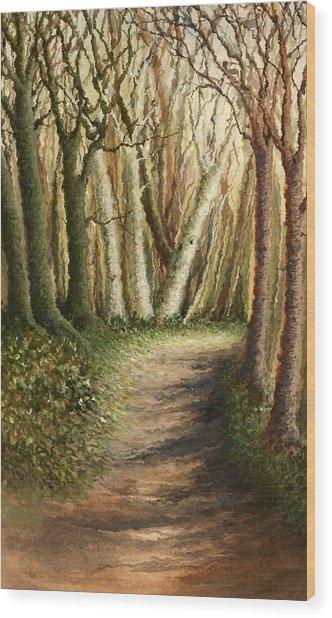 Woodland Walk Wood Print