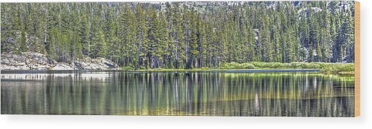 Woods Lake 4 Wood Print
