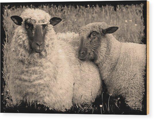 Wooly Love Wood Print