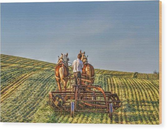 Work Horses Wood Print by Deborah Penland