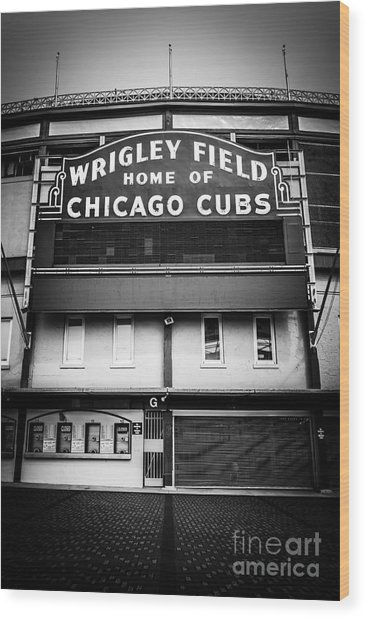 Wrigley Field Chicago Cubs Sign In Black And White Wood Print