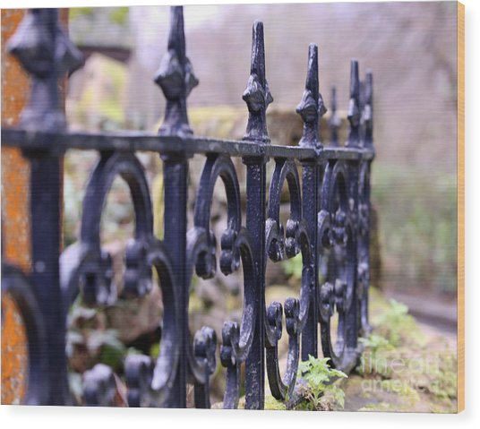 Wrought Iron Fence 1 Wood Print by Kate Purdy