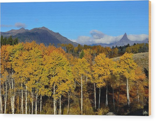 Wyoming In The Fall Wood Print