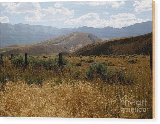Wyoming Scenery Wood Print by Sophie Vigneault
