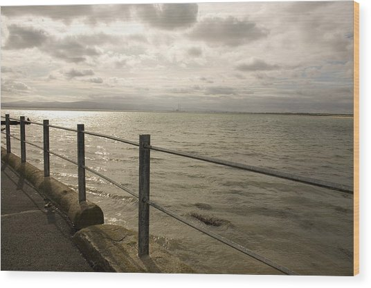 Across The Bay Wood Print by Pro Shutterblade