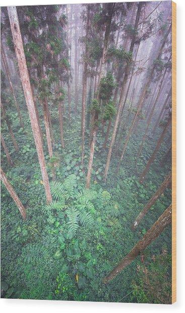 Xi Tou Wood Print