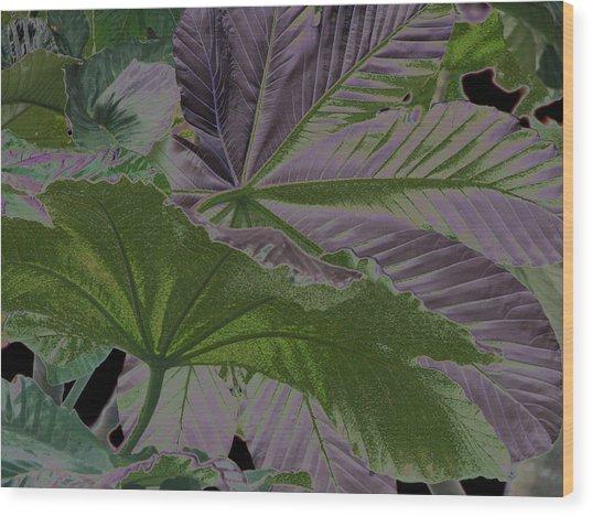 Yagrumo Wood Print