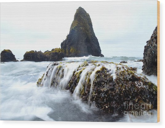 Yaquina Waves Wood Print by Sheldon Blackwell