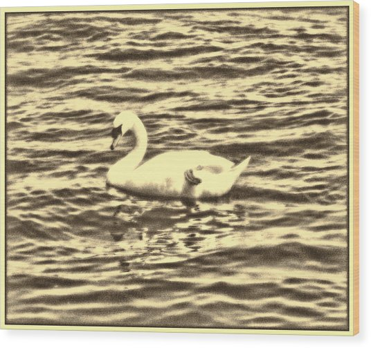 Wood Print featuring the photograph Ye Olde Swan by Shawn Dall