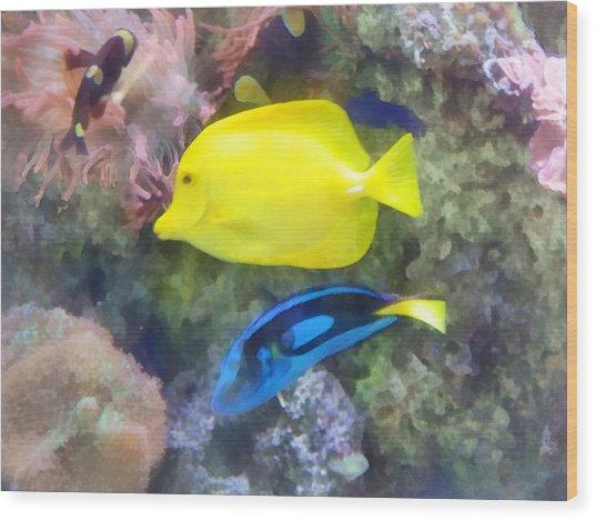 Yellow And Blue Tang Fish Wood Print by Susan Savad