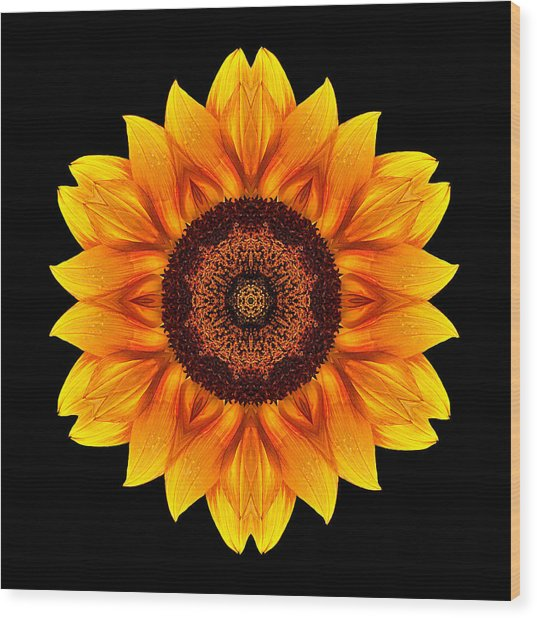Yellow And Orange Sunflower Vi Flower Mandala Wood Print