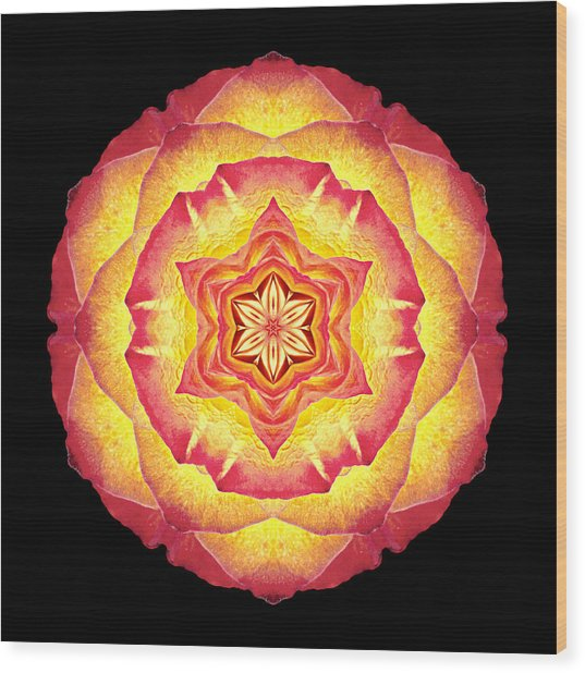 Yellow And Red Rose IIi Flower Mandala Wood Print