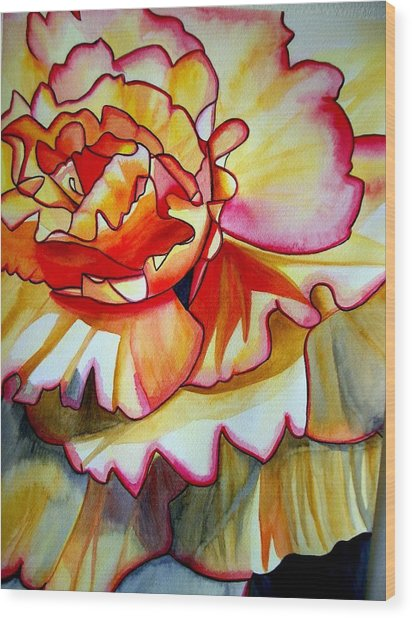 Yellow Begonia Wood Print by Sacha Grossel