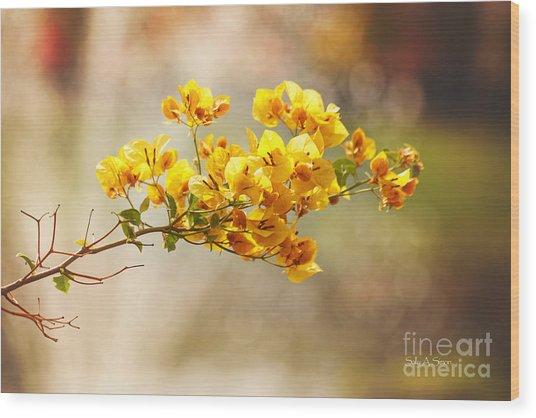 Yellow Bougainvillea Wood Print