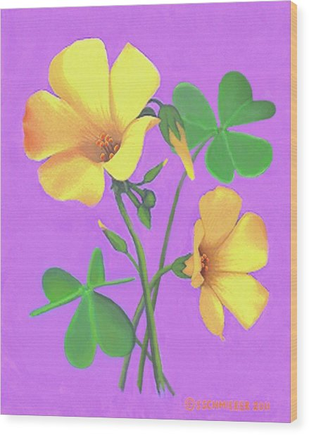 Yellow Clover Flowers Wood Print