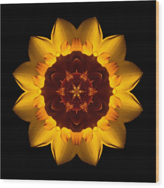 Yellow Daffodil I Flower Mandala Wood Print