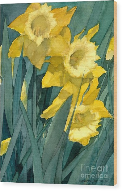 Watercolor Painting Of Blooming Yellow Daffodils Wood Print