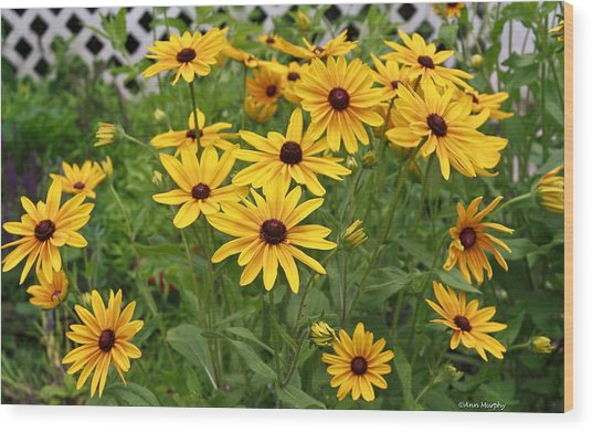 Yellow Daisy Flowers #2 Wood Print