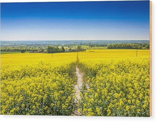 Yellow Fields. Wood Print