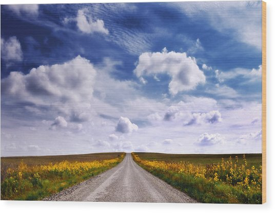 Yellow Flower Road Wood Print