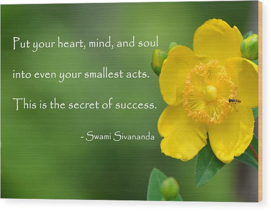 Yellow Flower With Success Quote Wood Print