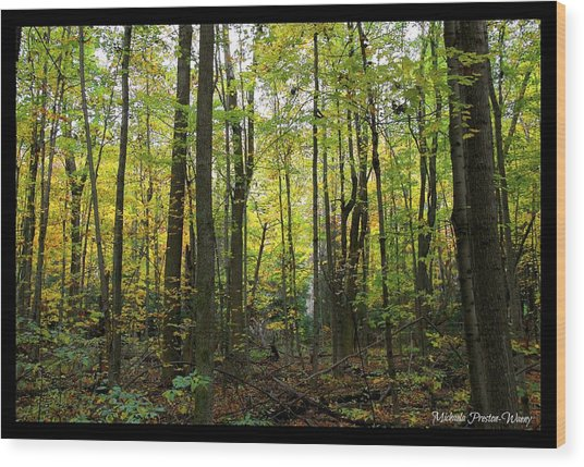 Yellow Forrest Wood Print