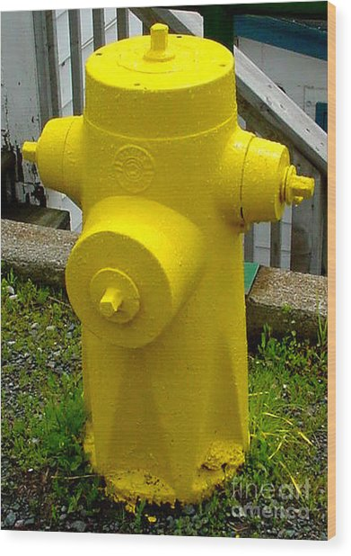 Yellow Hydrant Wood Print