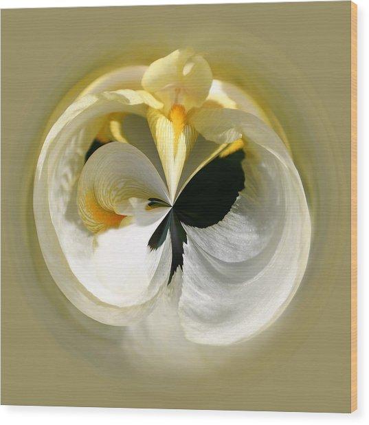 Yellow Iris 101 Wood Print