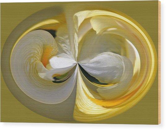 Yellow Iris Series 106 Wood Print