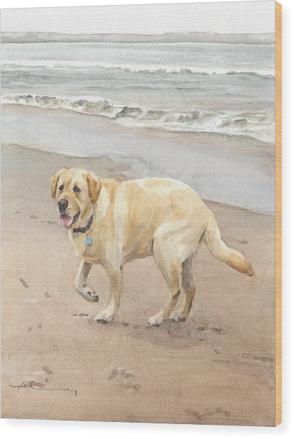 Yellow Lab On Beach Watercolor Portrait Wood Print by Mike Theuer