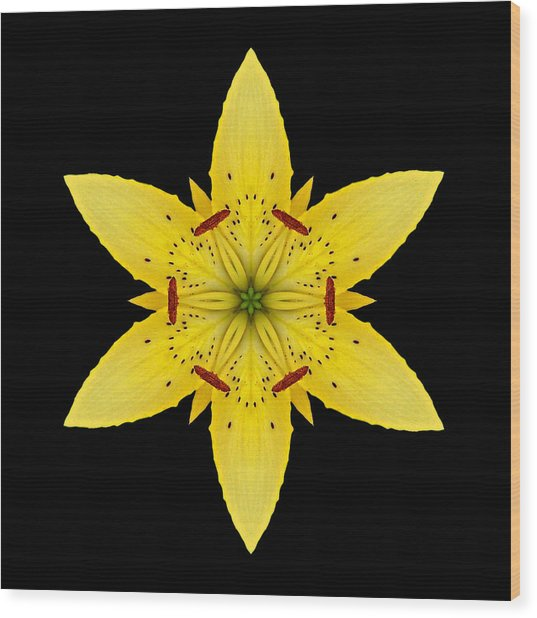 Yellow Lily I Flower Mandala Wood Print