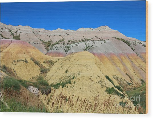 Yellow Mounds Badlands National Park Wood Print