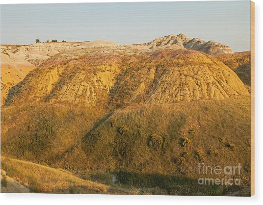 Yellow Mounds Overlook Badlands National Park Wood Print