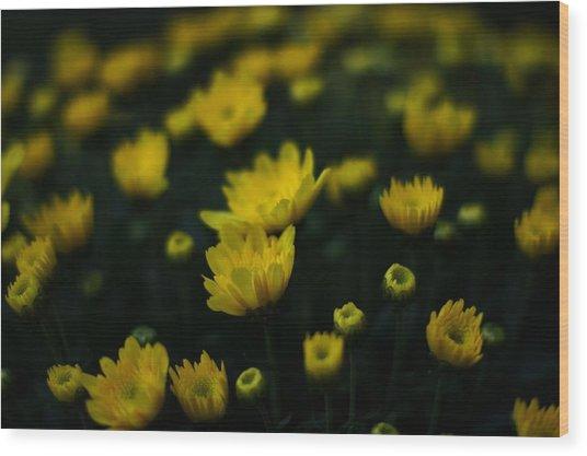 Yellow Mums Wood Print by Doug Hubbard
