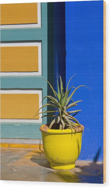Yellow Pot  Wood Print