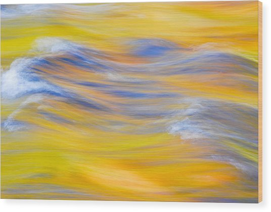 Yellow Reflection Wood Print