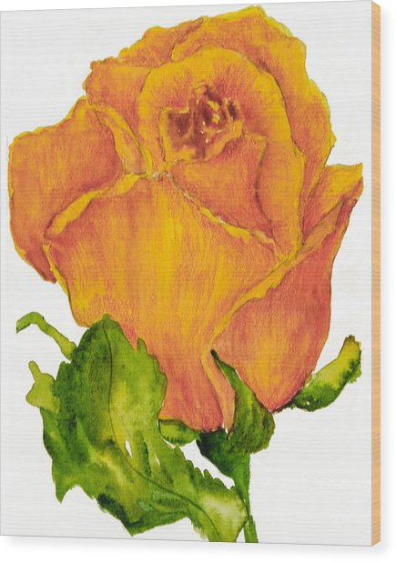 Yellow Rose Bud Wood Print