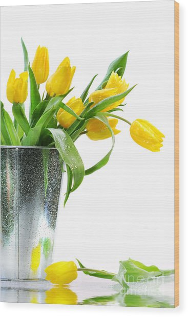 Yellow Spring Tulips Wood Print