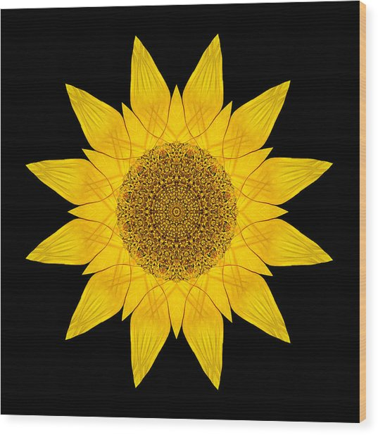 Yellow Sunflower X Flower Mandala Wood Print