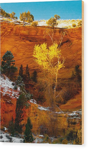 Yellow Tree Wood Print