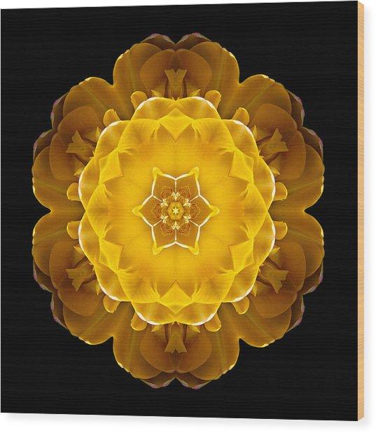Yellow Tulip II Flower Mandala Wood Print